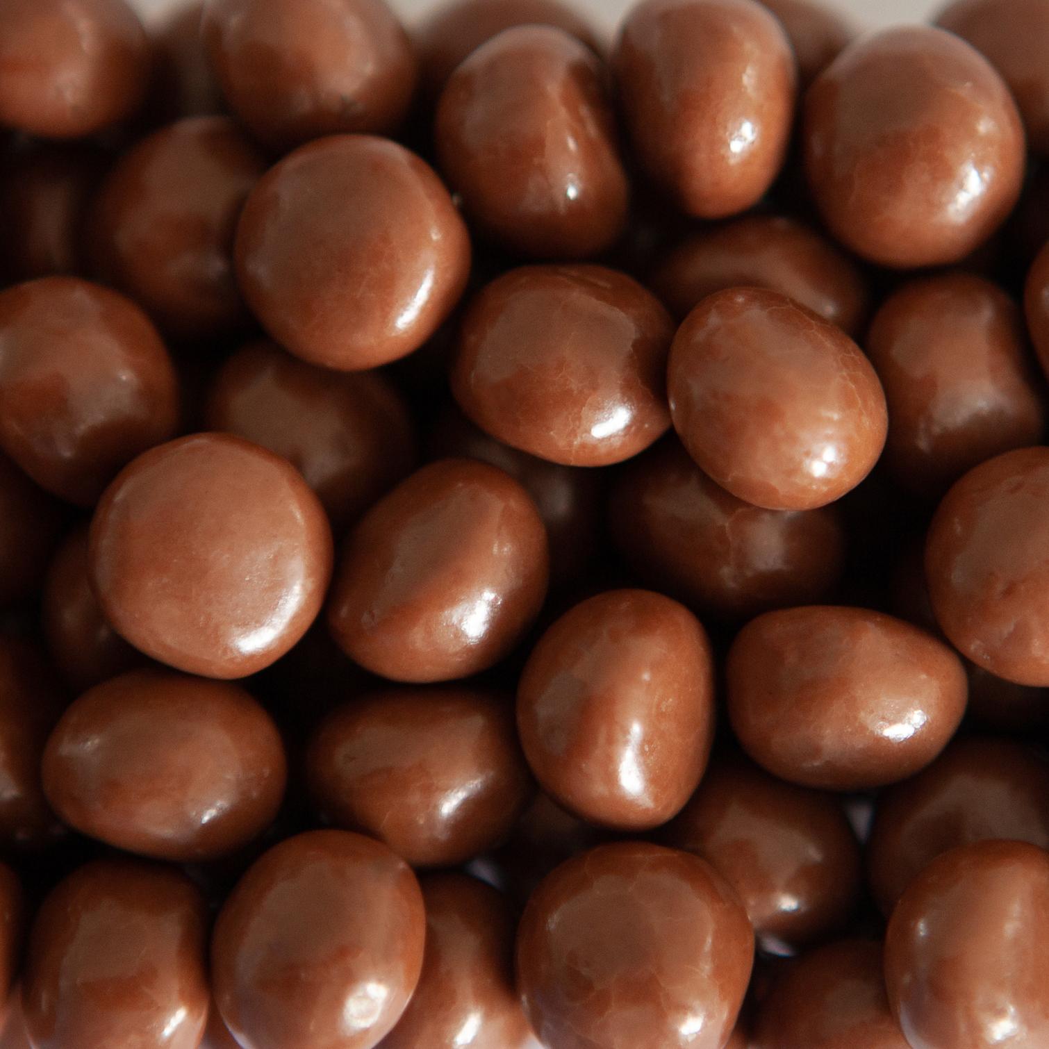 Biscuit Digestive Milk Chocolate